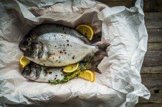 fish and healthy fats