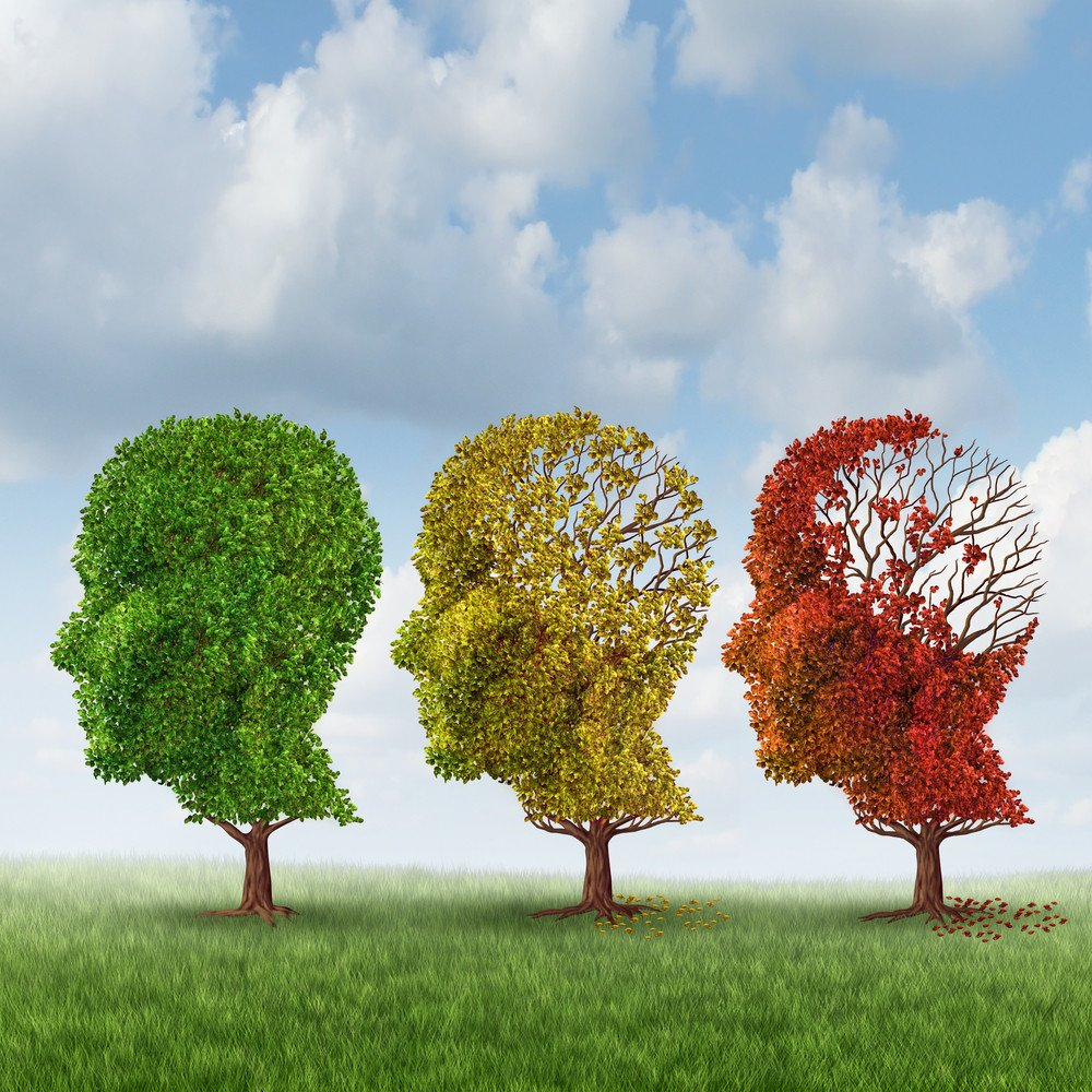 Nootropics: Preventing Alzheimer's and Boosting Brain Power