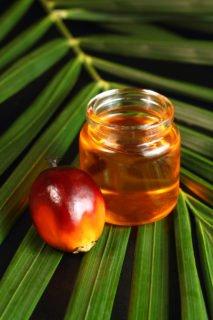 palm oil health