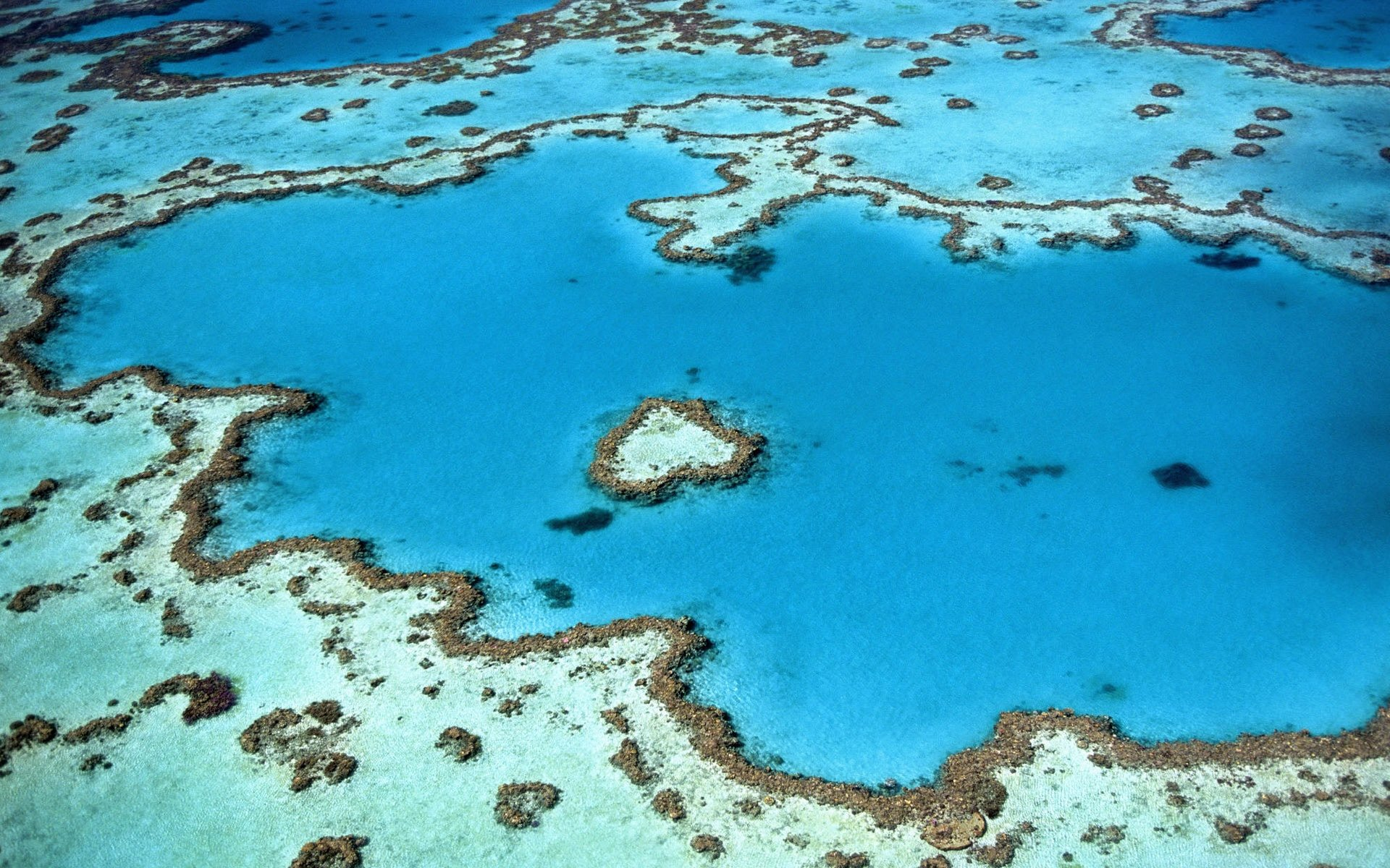Sunscreen, toxic oxybenzone and damage to the coral reefs