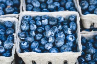 wild blueberry for better skin [longevity live]