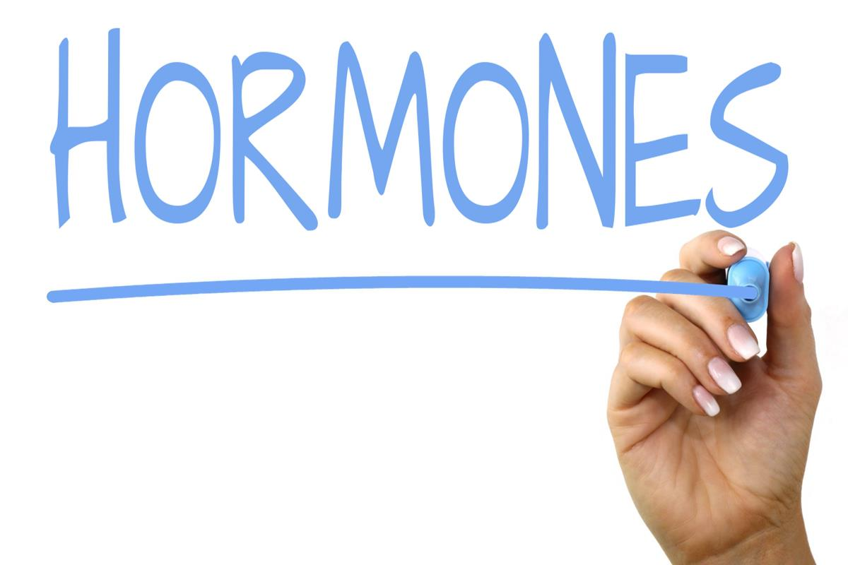 Endocrine Disruptors: Avoid These 8 To Protect Your Hormones