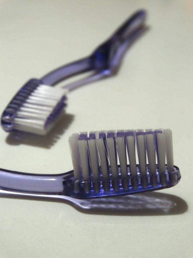 toothbrush | Longevity LIVE