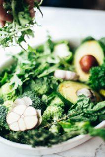 gut health vegan options [longevity live]
