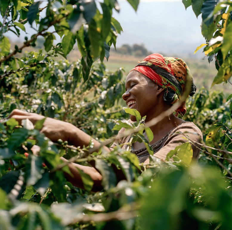 How Our Love Of African Coffee Will Help Communities Thrive