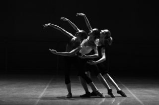 dance classes [longevity live]