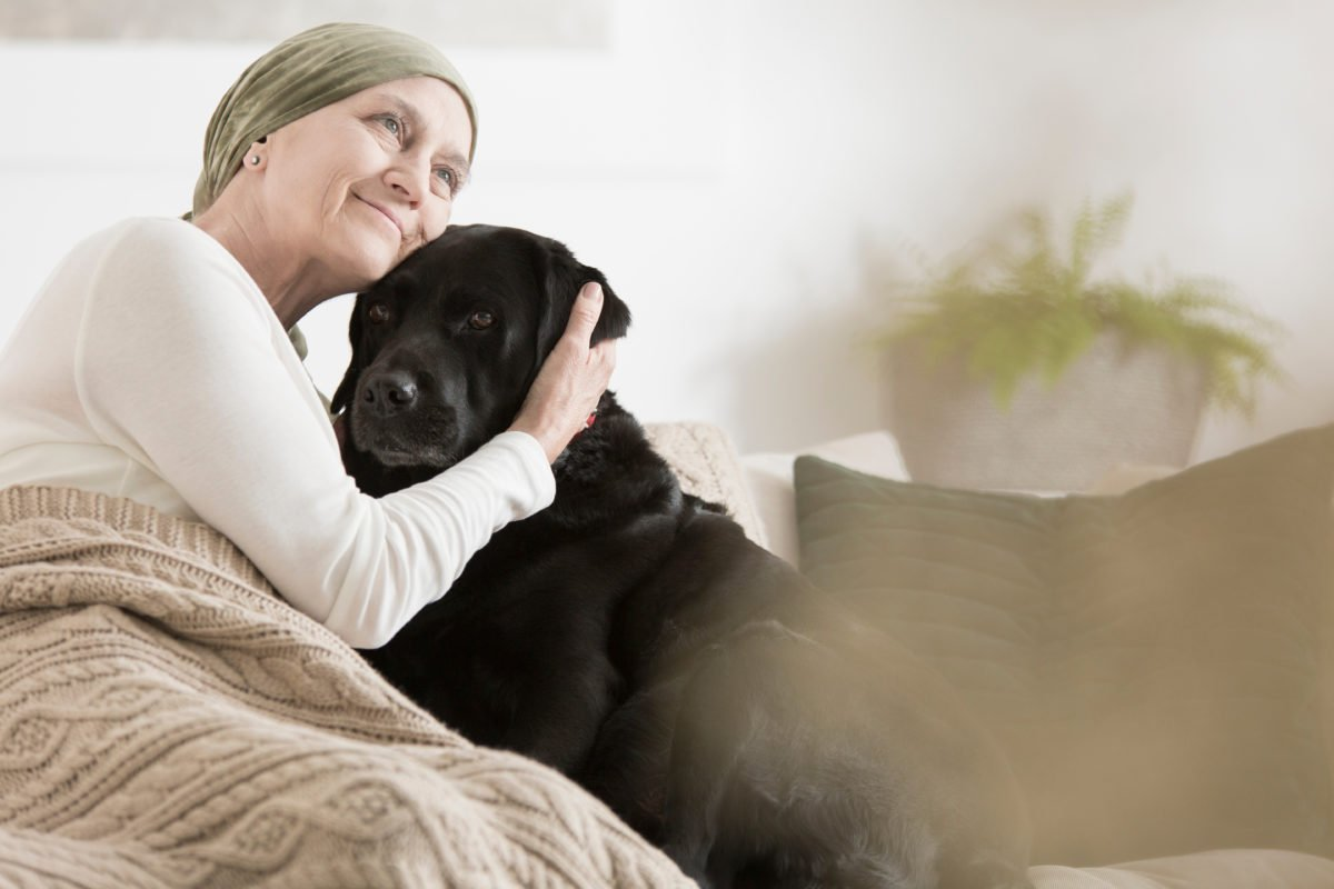 Dogs: Man's Best Friend May Hold Key To A Cure For Cancer