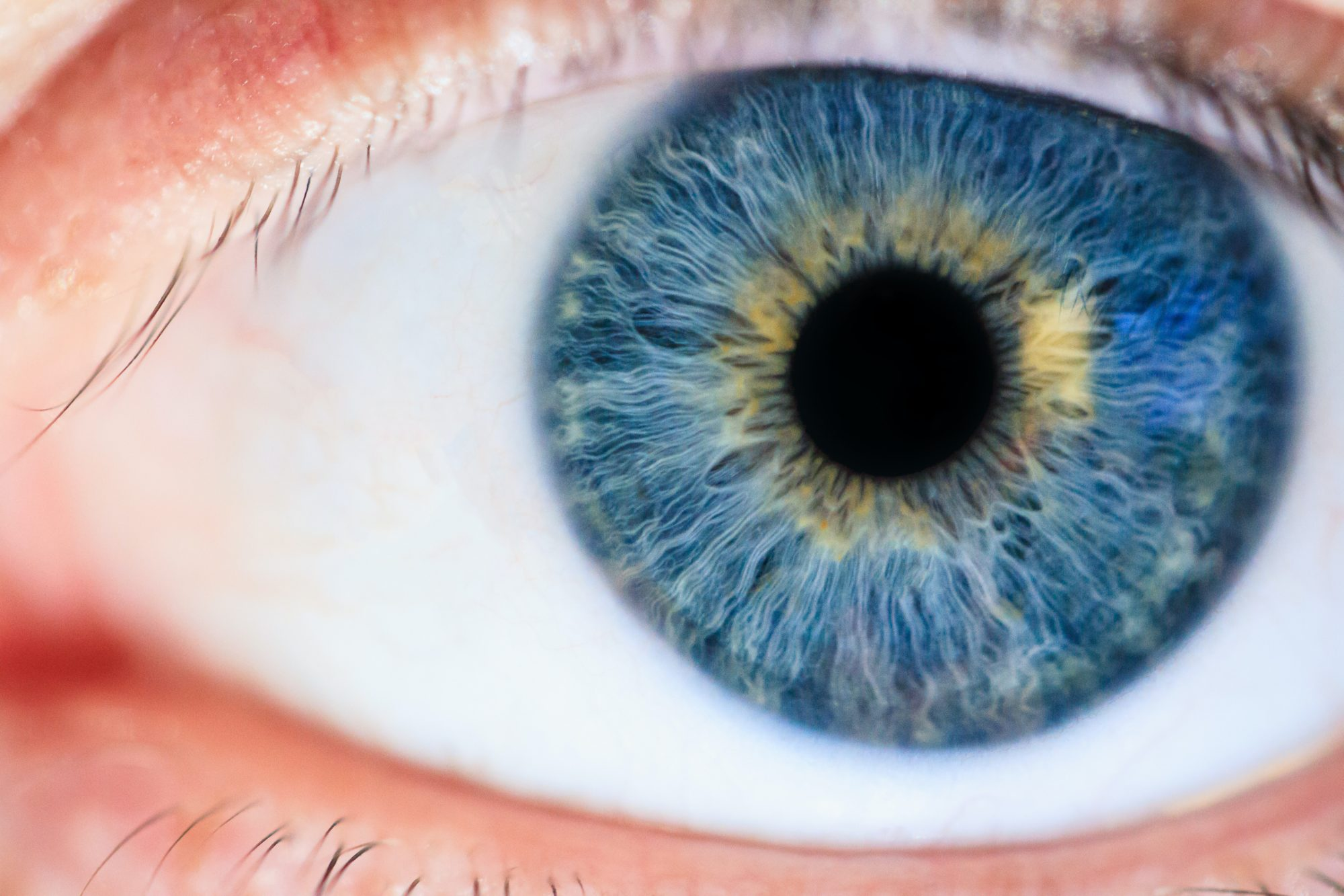 What Iridology And Sclerology Reveal About Your Eye Health